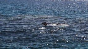 Гай с пикированиями инструктора после нырять в море видеоматериал