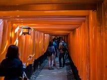 Галерея torii на святыне Fushimi Inari стоковое изображение rf