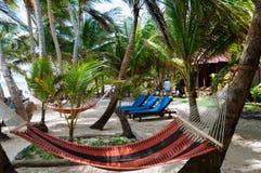 Гамаки и lounger в курорте под кокосом Стоковая Фотография RF