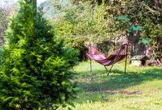Гамак в зеленом саде Стоковая Фотография RF