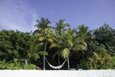 гамак Мальдивы пляжа тропические Стоковая Фотография