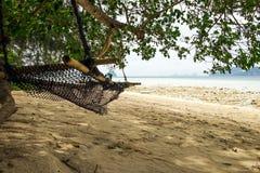 Гамак на пляже Стоковое Изображение