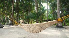 Гамак отбрасывая под кокосовыми пальмами видеоматериал