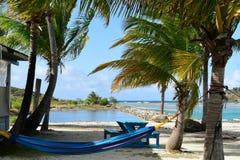 Гамак пляжа острова девственницы Стоковое Фото