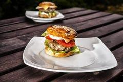 2 гамбургера Стоковая Фотография
