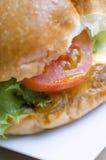 Гамбургер говядины, фаст-фуд Стоковые Фотографии RF