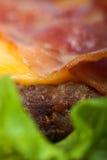 гамбургер детали Стоковая Фотография
