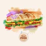 Гамбургер или сандвич акварели Быстро-приготовленное питание иллюстрация вектора
