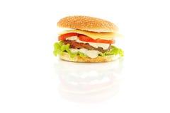 гамбургер котлеты Стоковое Изображение