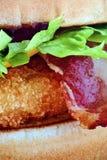 Гамбургер цыпленка Стоковые Изображения