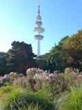 Гамбург, Генрих-Герц-башня стоковые фото