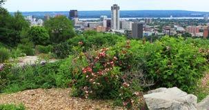 Гамильтон, Канада, центр города с цветками в переднем 4K видеоматериал