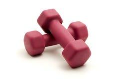 гантели исправили розовый вес Стоковая Фотография RF