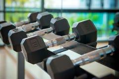 гантели в спортзале на спортклубе для тренировки и Bodybuildin Стоковое Изображение RF