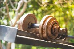 Гантели в спортзале Стоковое фото RF