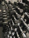 Гантели в стойке на спортзале Стоковое фото RF