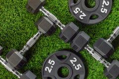 Гантели и весы на траве Стоковые Фотографии RF