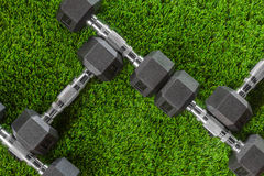 Гантели металла на зеленом цвете Стоковое Фото