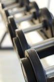 Гантели для поднятия тяжестей к тренировке Стоковые Фото