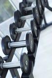 Гантели для поднятия тяжестей к тренировке Стоковая Фотография
