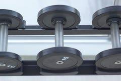 Гантели для поднятия тяжестей к тренировке Стоковое Изображение RF