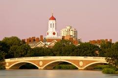Гарвард Стоковое Изображение RF
