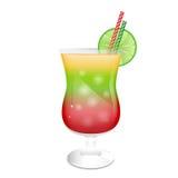 Гарнированное стекло коктеила Стоковые Изображения RF