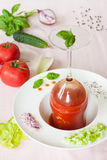Гаспачо - холодный суп томата с овощами стоковое фото rf