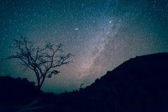 Галактика млечного пути, ночное небо при изумляя Stars Стоковое Изображение RF