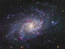 Галактика M33 Triangulum Стоковая Фотография