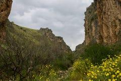 Галилея весной Стоковые Фотографии RF