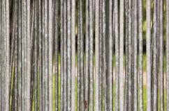 Гальванизированные загородки трубы которые штабелированы совместно на предпосылке зеленой травы в парке Стоковое фото RF