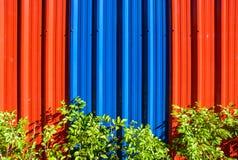 Гальванизированные стальные стена и зеленое растение Стоковые Фото