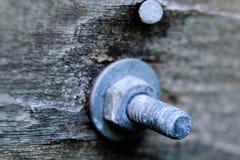 Гальванизированный болт через древесину Стоковое Изображение