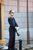 гвардеец Стоковая Фотография