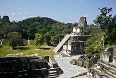 Гватемала tikal Стоковые Фотографии RF