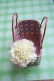 гвоздика корзины Стоковая Фотография RF