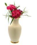гвоздика цветет розовая ваза красной весны Стоковая Фотография RF