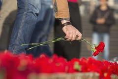 Гвоздика цветет символ оплакивать Стоковое фото RF