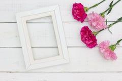 Гвоздики и рамка цветка Стоковые Фотографии RF