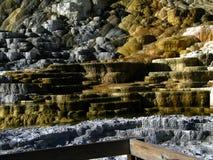 Гейзеры 9 национального парка Йеллоустона Стоковые Изображения