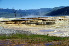 Гейзеры 11 национального парка Йеллоустона Стоковая Фотография RF