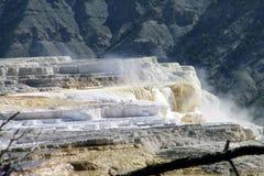 Гейзеры 14 национального парка Йеллоустона Стоковое фото RF