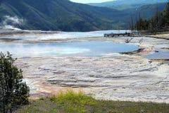 Гейзеры 16 национального парка Йеллоустона Стоковая Фотография RF