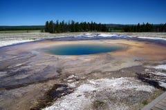 Гейзеры 20 национального парка Йеллоустона Стоковое Фото