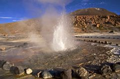Гейзеры El Tatio в Atacama, Чили Стоковая Фотография RF
