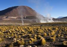 Гейзеры El Tatio - пустыня Atacama - Чили Стоковое фото RF