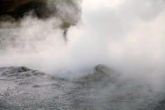 Гейзеры El Tatio, Чили Стоковые Фото