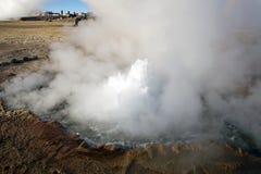 Гейзеры El Tatio, Чили Стоковые Фотографии RF