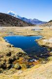 Гейзеры Junthuma, сформированные геотермической деятельностью bolivians стоковая фотография